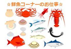 【徳島】スーパーの鮮魚コーナーでのパック詰めのお仕事☆未経験者可☆
